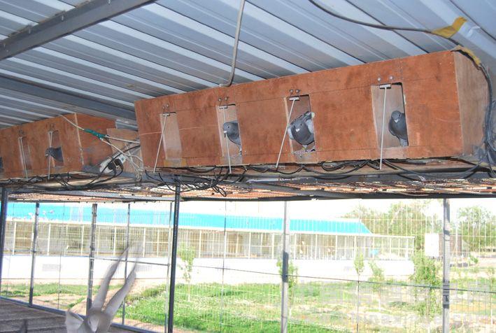 彩钢赛飞鸽舍设计图纸展示