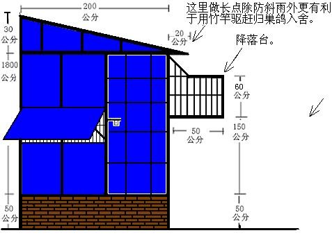 请大家帮忙发几张设计鸽舍的图纸.我好建鸽舍