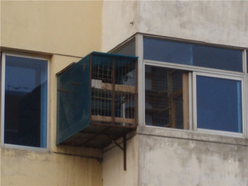 阳台鸽舍设计展示