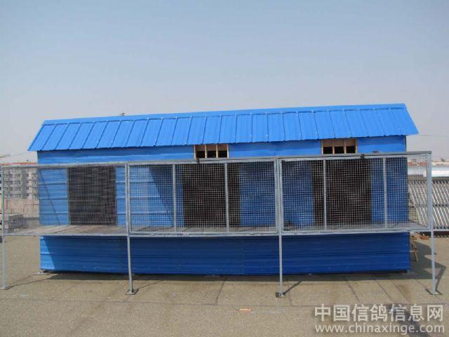 鸽棚的建造的问题图片
