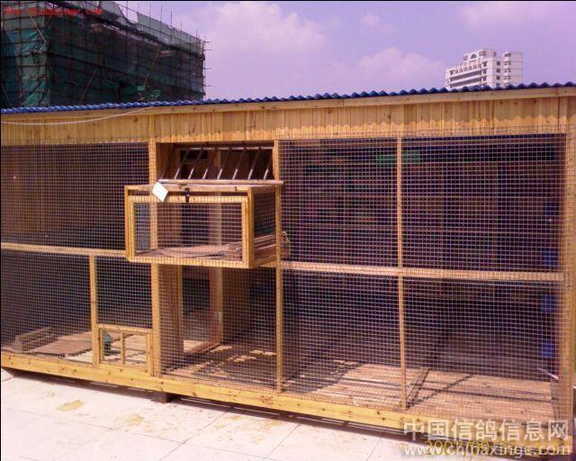 中国 鸽舍/可以去百度图片里搜索鸽舍建造,那里很多的!