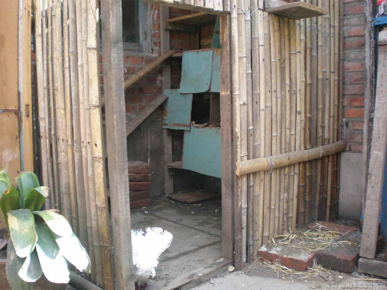 用竹子如何搭鸽舍的骨架