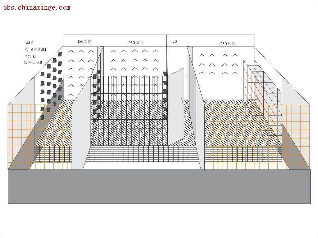 2米鸽棚设计图片